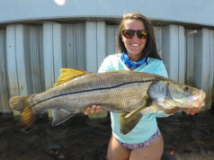 fishing snook