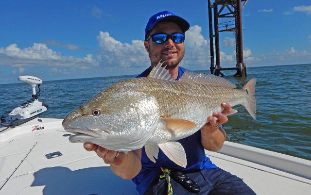 Louisiana redfish