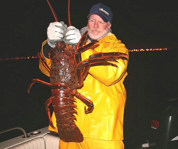 Hoop-Netting California Lobster