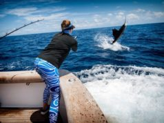 Billfish fishing