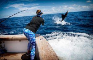 Billfish fishing