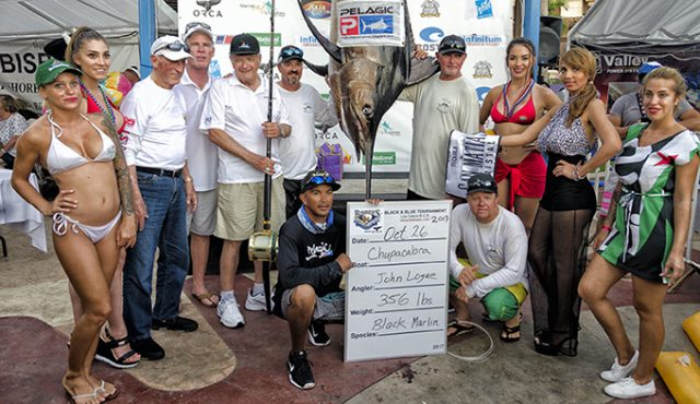 Bisbee marlin - Bisbee Tournament