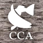 CCA Shimano