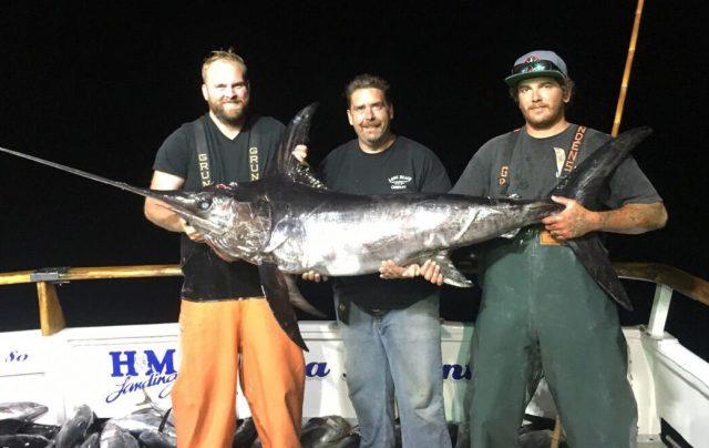 jig swordfish
