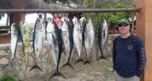 beach tuna