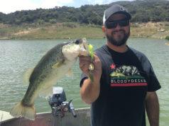 Bass Fishing Barrett