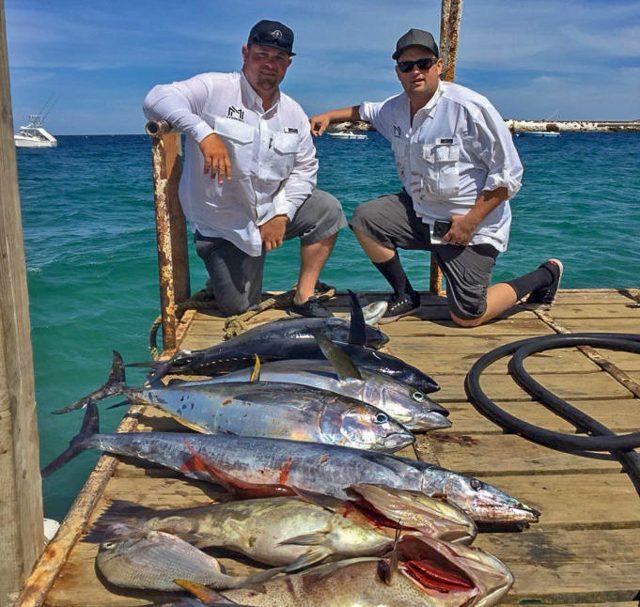 Yellowfin Bluefin Dominate