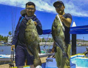 Sportfishing Report