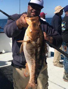 Bass fishing saltwater