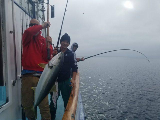 SoCal fish counts
