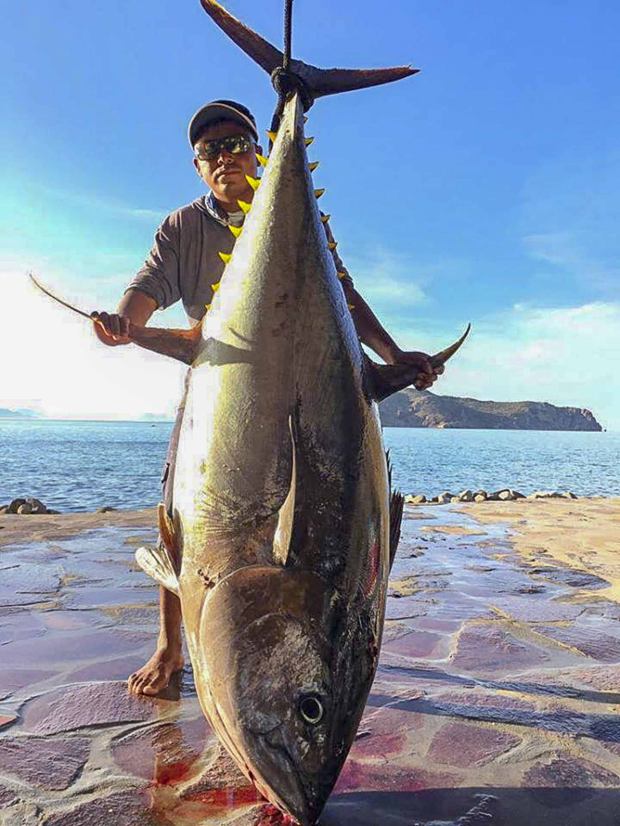 monster tuna