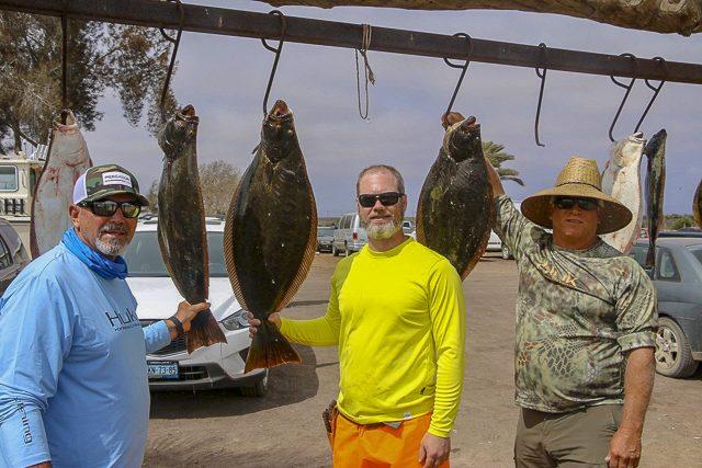 Baja sportfishing hot