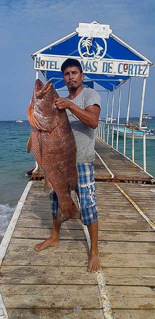 summer sportfishing