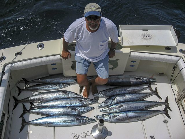 Baja Wahoo Incidental Catch