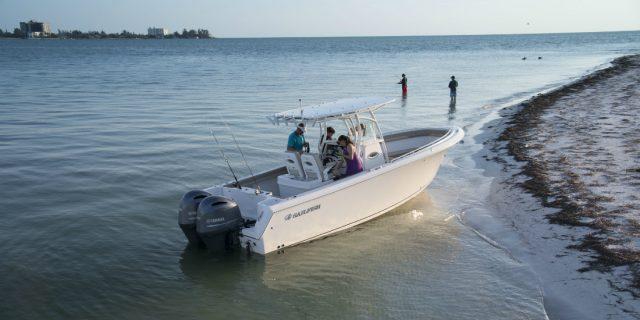 Sailfish 270