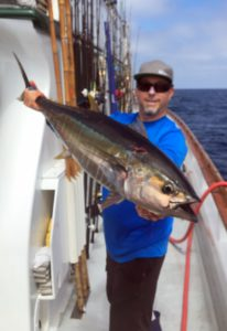 Bluefin Still Biting