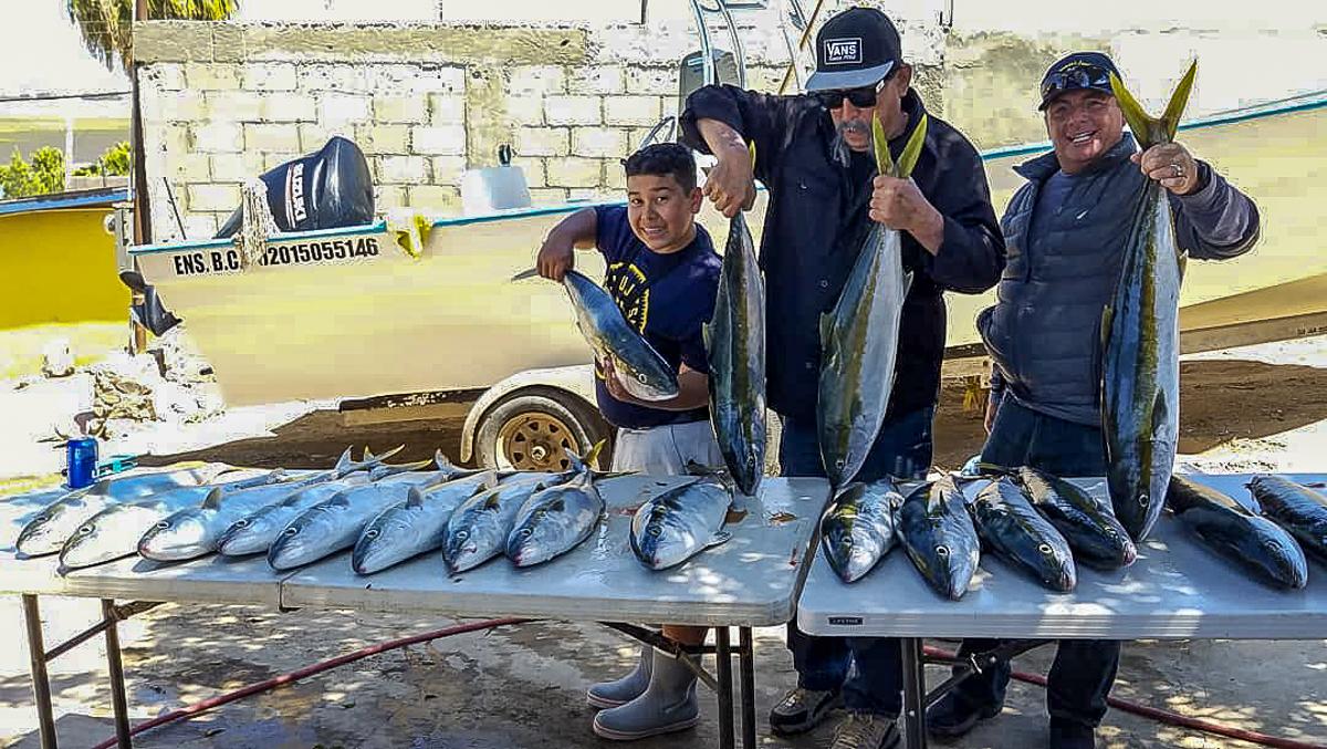 Maras-Sportfishing-Ensenada1.jpg