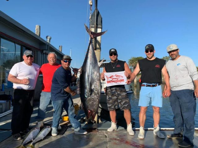 275 pound bluefin tuna caught by Team Reel E-ZE in the 2019 Yellowtail Shootout