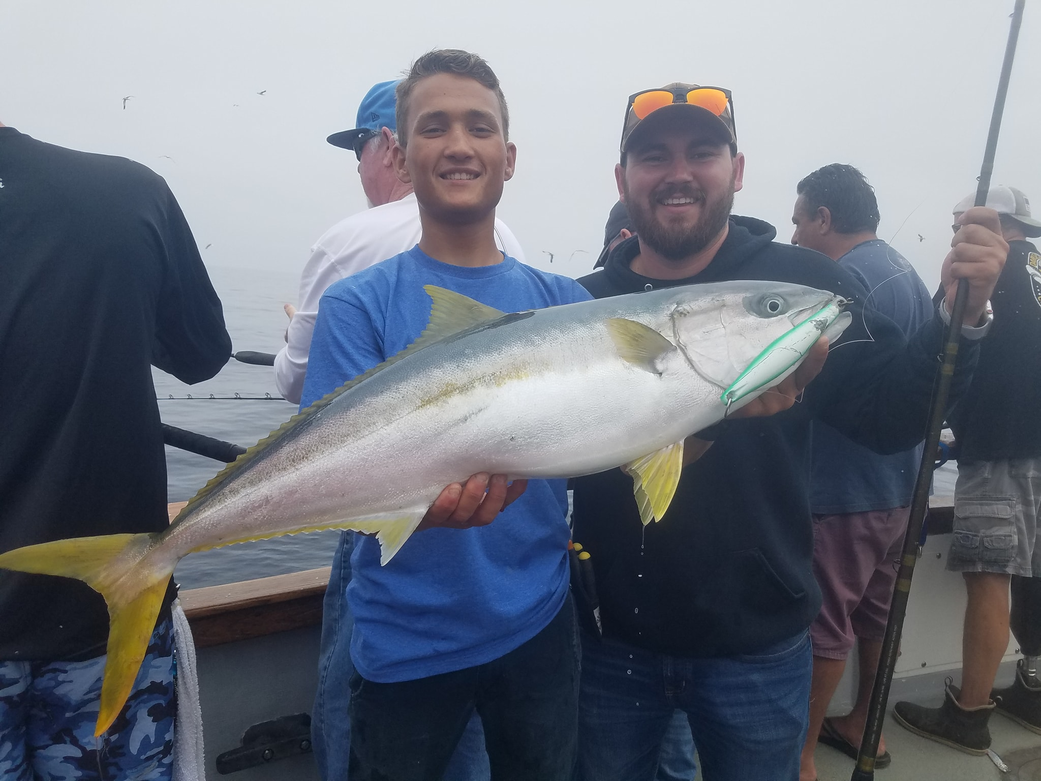 san diego fishing report yellowtail tuna on the iron