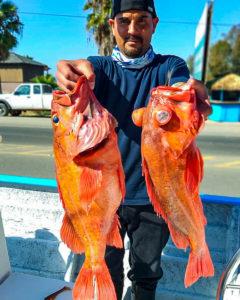 marara-sportfishing-240x300.jpg