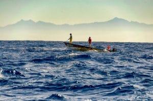 billfish harpooning