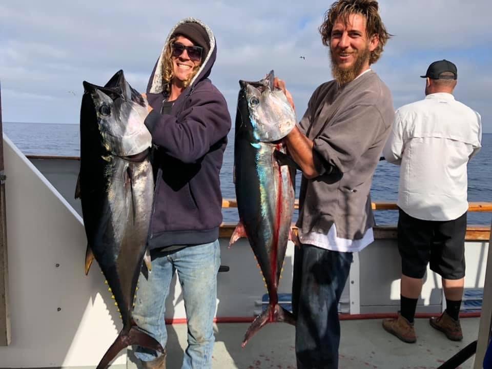 November bluefin