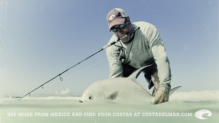 icast 2012 tackle show