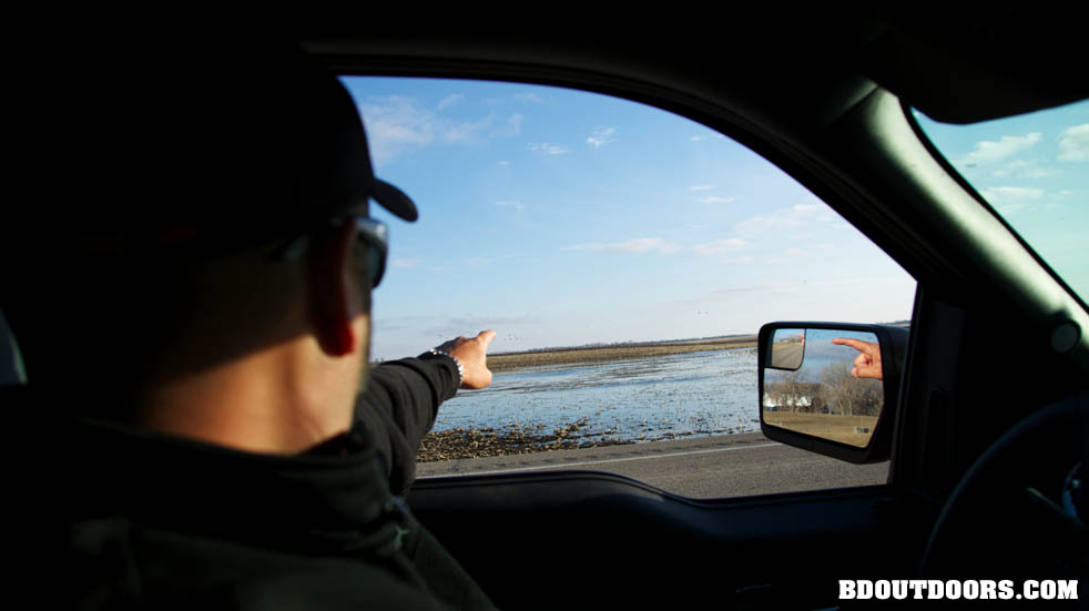 a research on the overpopulation of snow goose During the special snow goose season because of the overpopulation and degraded but you'll still have to do a little research to understand how and.