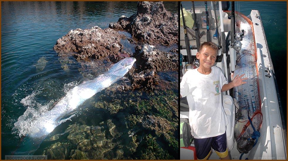 catching oarfish